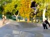 Burbank Skate Park0255