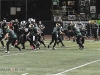 viking-football-game-action-3845