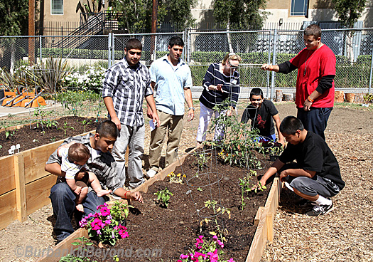 Students from Burbank's Community Day School inspect some of their work in their new garden as teacher Adam Freeman and Principal Chris Krohn look on.    (Photo By Ross A. Benson)