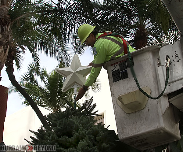 City-Hall-Xmas-tree-prep-2