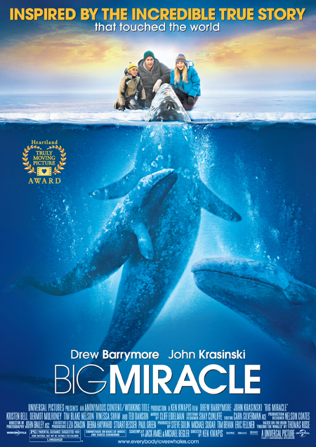 Big Miricle Movie