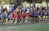 It&#039;s off to the races for the Burroughs and Burbank cross country teams (Photo by Craig L.Sherwood)