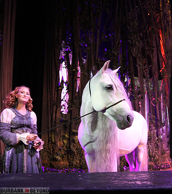 Cavalia Horse posed-1