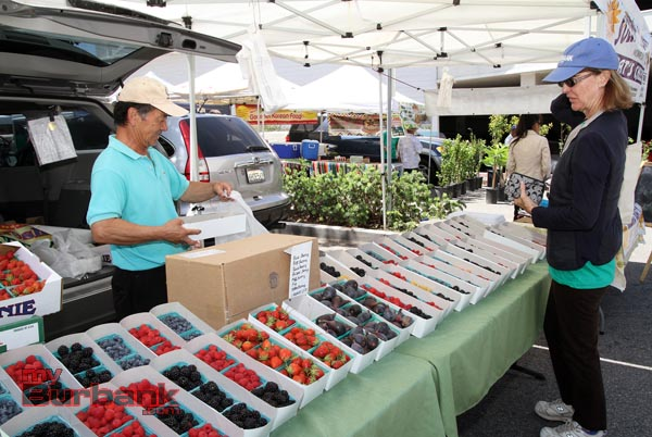 Mayor Emily Gabal-Luddy buying some fresh berries. (Photo by Ross A. Benson)