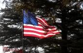 Flag -1
