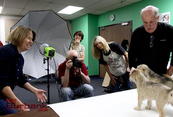 Deb Cobb (Shelter Art Foundation) David Snyder, Carolyn Malden, Lorry Izor, Steve Sloop (Shelter Art Foundation) get puppies ready for that glamor shot. ( Photo by Ross A. Benson)