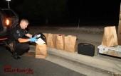 Auto Burg Suspects-6