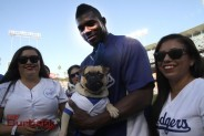 The Dodgers' Yasiel Puig met with man's best friend during pregame ceremonies (Photo by Ross A. Benson)