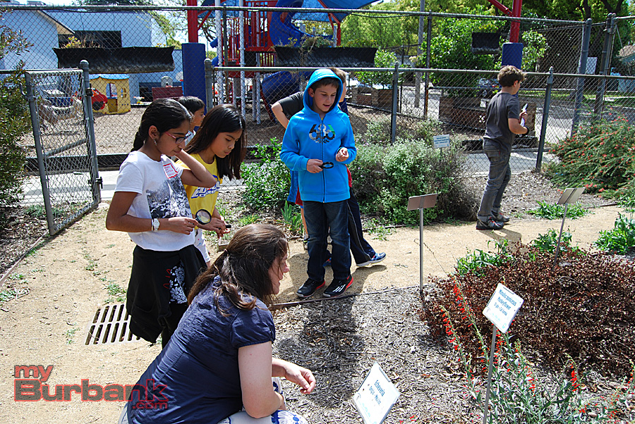 McKinley parent and school garden director Catlan Brinsley (foreground) talks with BUSD students in the Burbank Adult School garden. (Photo By Lisa Paredes)