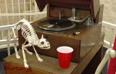 A faux skeleton of a cat poses on the vintage Victrola phonograph at the museum.