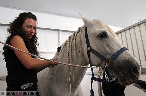 A groomer braids a horse that arrived hours prior getting ready for a rehearsal. (Photo by Ross A. Benson)