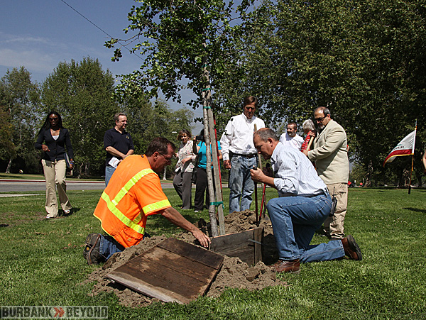 Burbank's Park, Recreation & Community Services Department prepare the planting of one of the tree planted for this years Burbank Civic Pride Committee's 58th annual 'Plant a Tree Event. (Photo by Ross A. Benson)