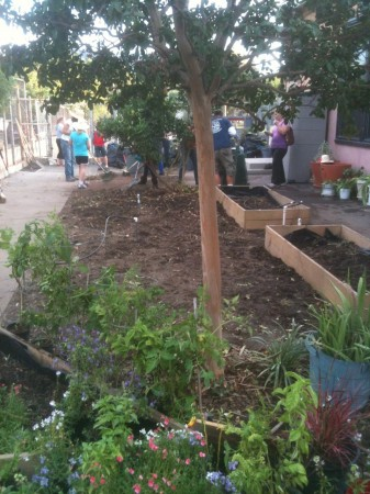 Volunteers work in the Roosevelt Family Garden. (Photo Courtesy of Kristen Jennings)