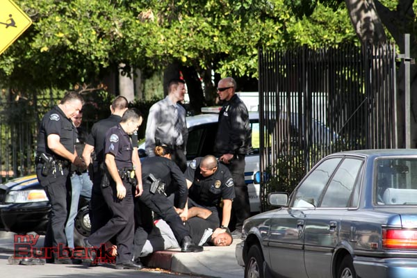 Burbank Police work at taking a very combative hit & run suspect into custody. (Photo by Ross A. Benson)