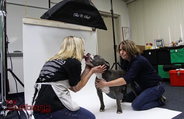 Lorry Izor gets a kiss from Maytag a Pit Bull Terrier Deb Cobb looks on. ( Photo by Ross A. Benson)