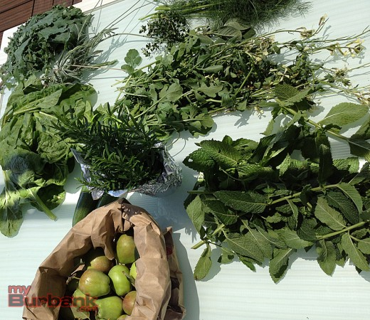 Fresh vegetables, herbs and fruits from the Stevenson Elementary garden. (Photo By Lisa Paredes)
