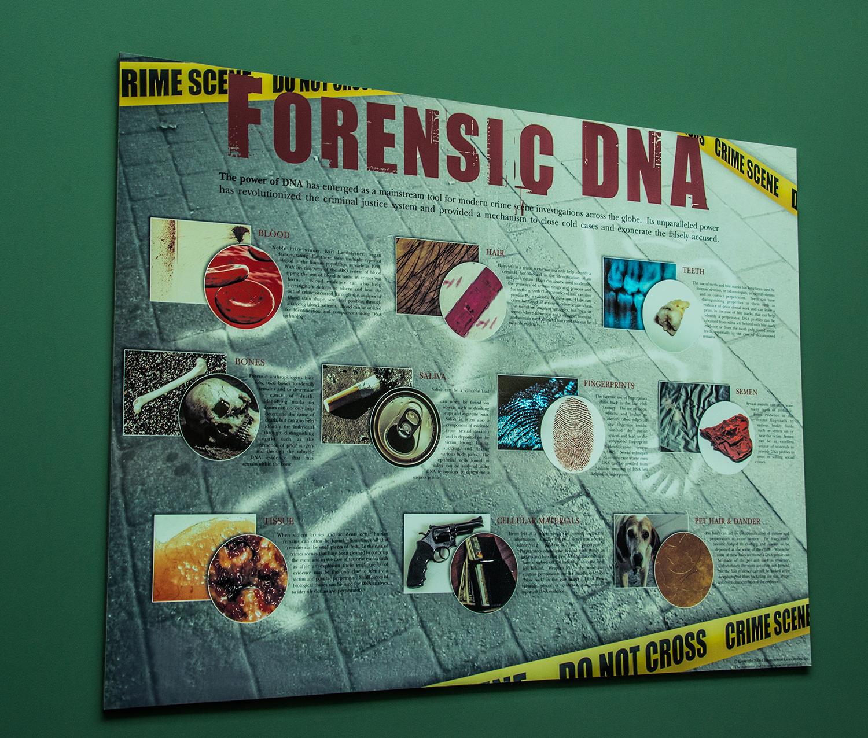 DNA-01